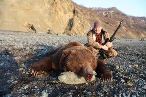 Koryakia brown bear