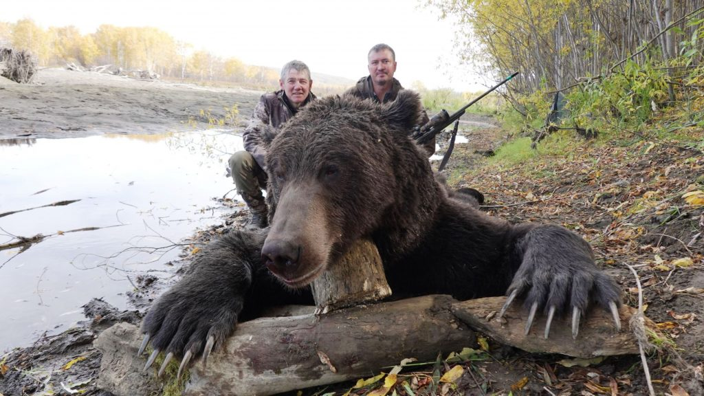 Kamchatka_bear_on_river